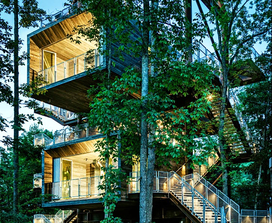 the sustainability tree house