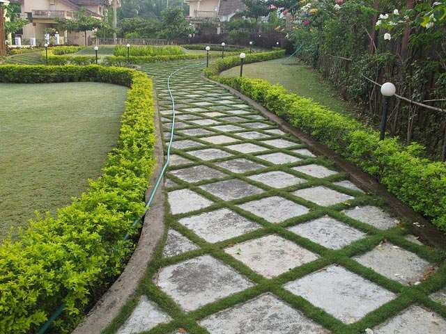 BHK Farm House for Sale at Quepem, Goa (REI318255) - 278 Sq. Meter