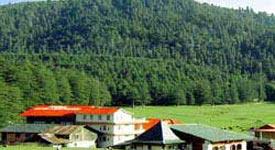 Property in Dalhousie