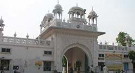 Property in Sangrur