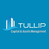 Tullip Capital & Assets Management