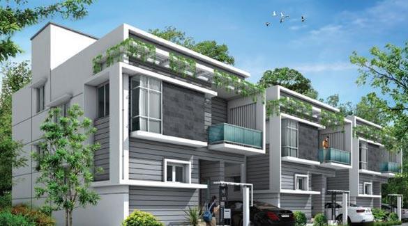 Villa Green, Chennai - Residential Villas