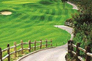 Orris Greenbay Golf Village Plots