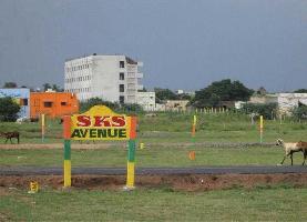 SKS Avenue