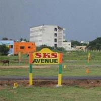 SKS Avenue  - Chennai