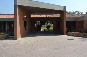Suramya Grove
