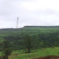 Fragrant Meadows - Satara