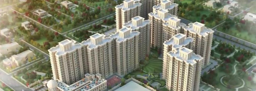 The Serenas, Gurgaon - Residential Apartments