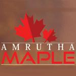Amrutha Maple