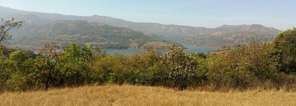 Natures Magic, Pune - Residential Plots