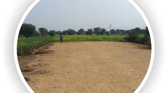Pawani Vihar, Jaipur - Residential Cum Commercial Plot For Sale