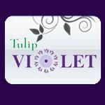 Tulip Violet
