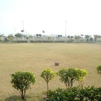 Palm Garden - Ludhiana