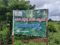 Nandana Gardens