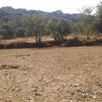 Mangaon - Raigad