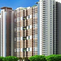 Victory Ace - Sector 143, Noida