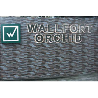 Wallfort Orchid