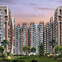 Magnum Oasis Green - Tronica City, Ghaziabad