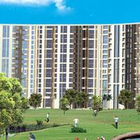 Pavilion Court - Noida