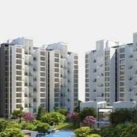 Fria - Wagholi, Pune