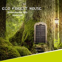 Eco Forest House