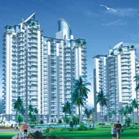 Hamilton Heights - Sector 37, Faridabad