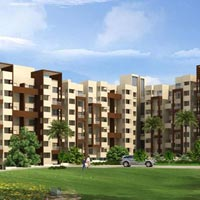 Pristine Palms - Pune