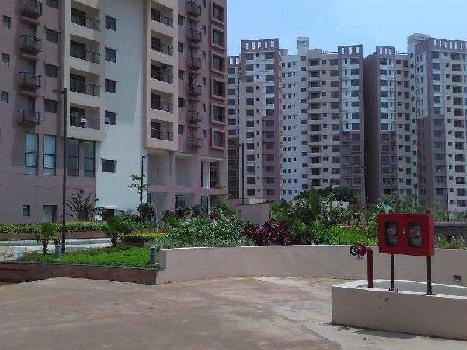 3 BHK 1563 Sq.ft. Residential Apartment for Sale in Patia, Bhubaneswar