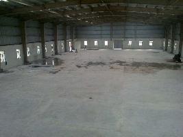 10786 Sq.ft. Warehouse for Rent in Samalkha, Panipat