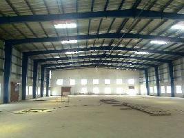 50000 Sq.ft. Warehouse for Rent in Samalkha, Panipat