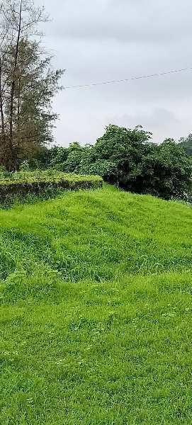 200 Guntha Farm Land for Sale in Khalapur, Navi Mumbai