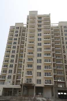 3 BHK 2300 Sq.ft. Residential Apartment for Sale in Sector 91 Mohali