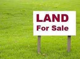 100 Acre Farm Land for Sale in Sunny Enclave Amloh Road Khanna,