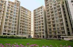 3 Bhk Flats & Apartments for Sale in Sector 100, Noida - 1850 Sq.ft.