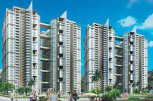4 BHK Flats & Apartments for Sale in Alpha-II, Greater Noida - 2400 Sq.ft.