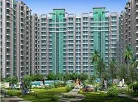 3 Bhk Flats & Apartments for Sale in Pi - Sector, Greater Noida - 1740 Sq.ft.