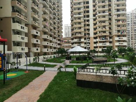3 BHK 1255 Sq.ft. Residential Apartment for Sale in Sector 143 Noida