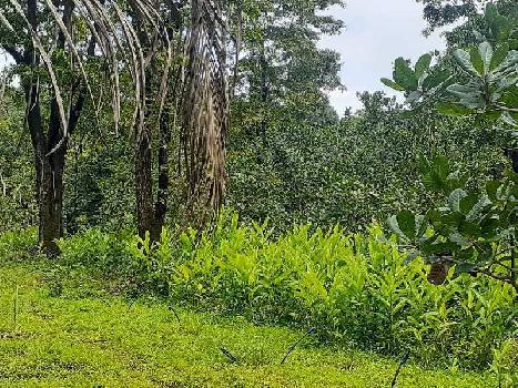 110 Acre Commercial Land for Sale in Undri, Pune