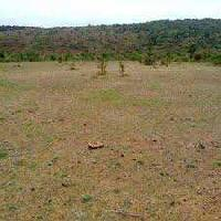 500 Sq. Yards Residential Plot for Sale in CHD City, Karnal