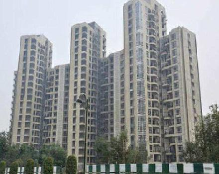 3 BHK 1905 Sq.ft. Residential Apartment for Rent in Main Road, Greater Noida