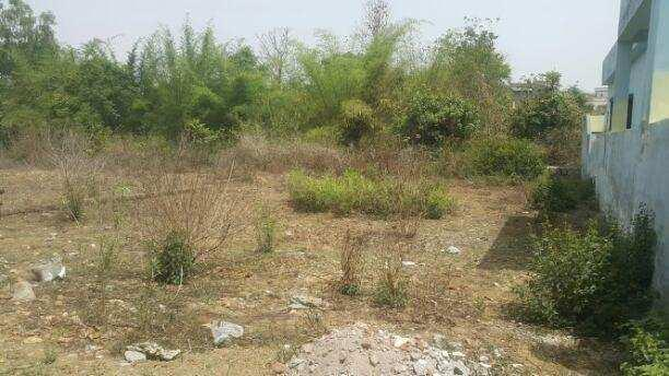 1800 Sq.ft. Residential Plot for Sale in Kanisi, Berhampur