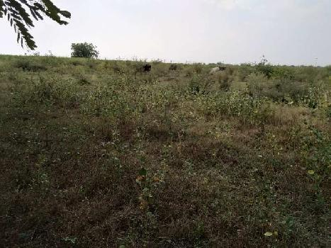 1700 Sq.ft. Residential Plot for Sale in Reosa, Amravati
