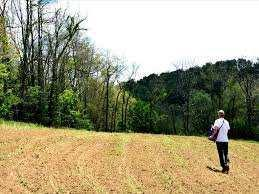 9 Acre Residential Plot for Sale in Jagatpur, Cuttack