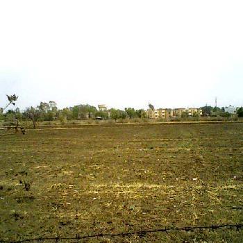 1620000 Sq.ft. Residential Plot for Sale in Adajan, Surat