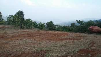 1250 Sq.ft. Residential Plot for Sale in Dabok, Udaipur