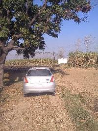 108 Bigha Farm Land for Sale in Budhana, Muzaffarnagar