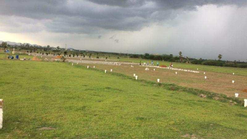 Residential Plot for Sale in Vijayawada - 100 Sq. Yards