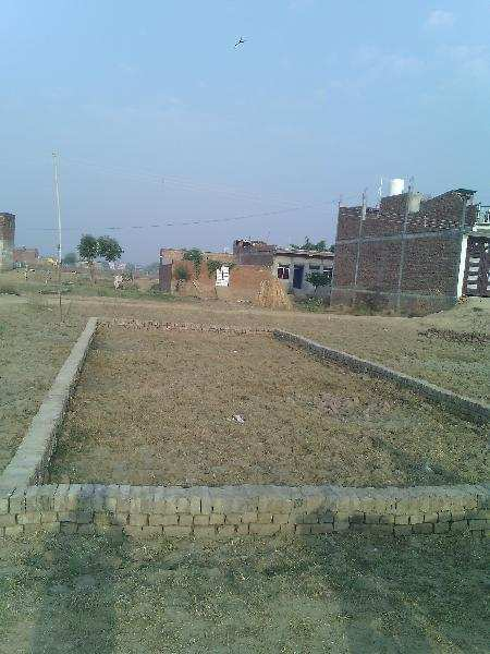 Residential Plot for Sale in Bhind - 1000 Sq. Feet
