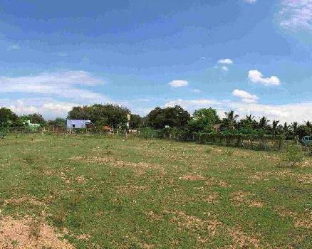 200 Sq. Yards Commercial Land for Rent in Hari Nagar, Delhi