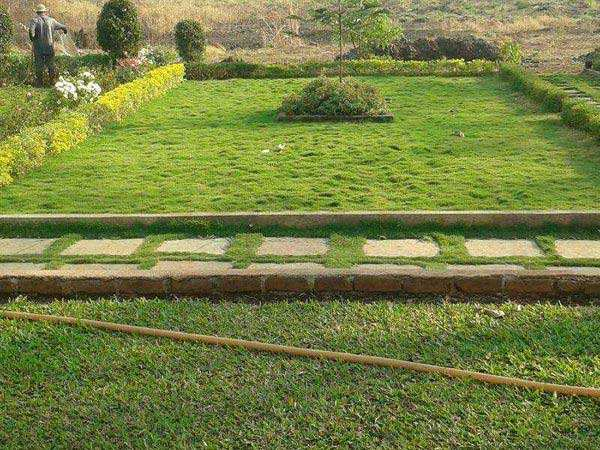 Residential Plot for Sale in Raigad - 7556 Sq. Feet